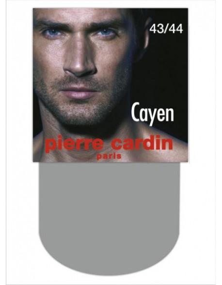 Cayen 08