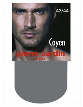 Cayen 09