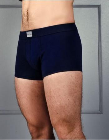 "Meeste aluspüksid ""Boxer Luis"""